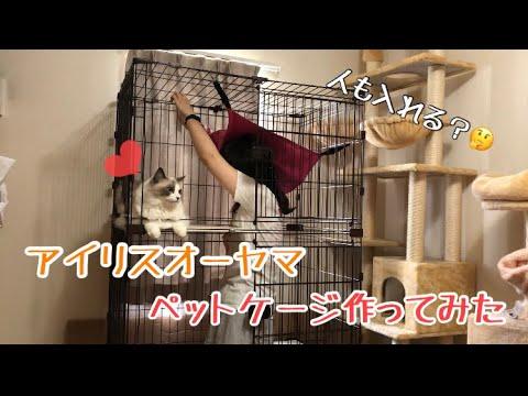 猫用ペットケージ組み立ててみたアイリスオーヤマ
