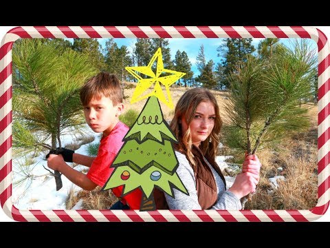 WE FOUND IT! | CHRISTMAS TREE HUNTING!