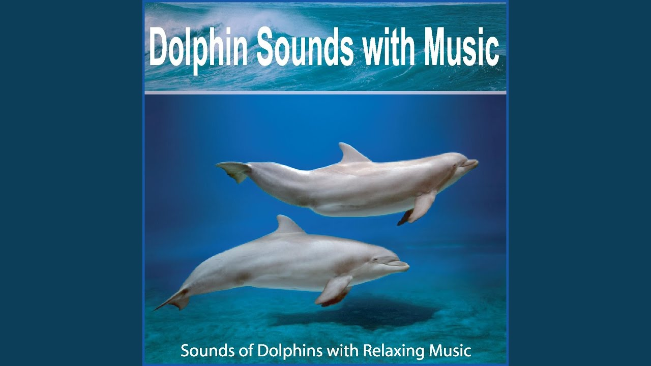 Dolphin Sounds With Relaxing Music - YouTube