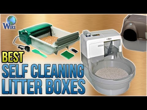 6 Best Self Cleaning Litter Boxes 2018