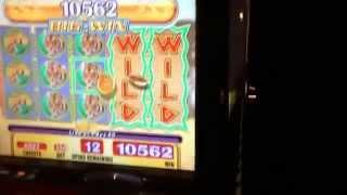 Running wild slot machine bonus big win