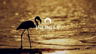 Content Hub - Infinity Properties: Infinity Waters