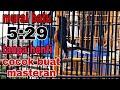 Murai Batu 5 29detik Tanpa Henti Cocok Buat Masteran Omkicau(.mp3 .mp4) Mp3 - Mp4 Download