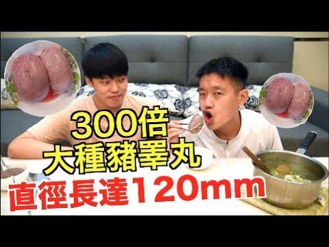 【狠愛演】300倍大種豬睪丸!!『直徑長達120mm』