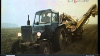 1985 год. Уборка картофеля в Брянской области. Сюжет программы Время