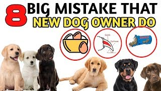 8  Big Mistake That Every New Dog Owner Do /  MISTAKE जो हर DOG OWNER करते है