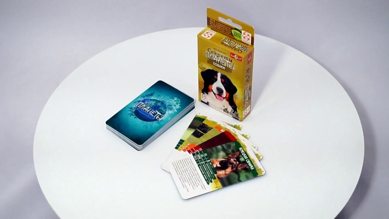 Секреты Планеты: Собаки. Обзор настольной игры от компании Стиль Жизни