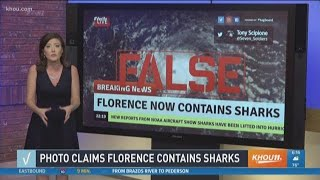 VERIFY: Hurricane Florence does not contain sharks