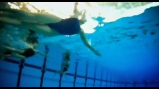 """Синхронное плавание в передаче """"Технологии спорта"""""""