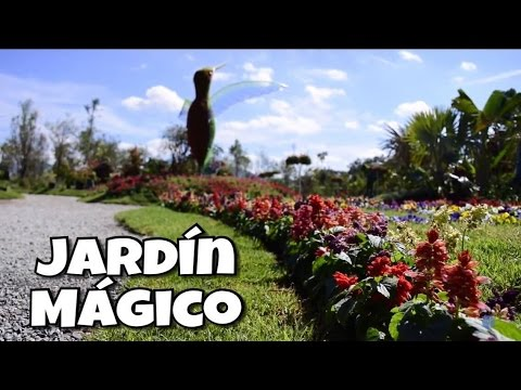 jard n magico maypab youtube