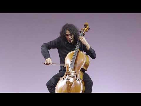A singular cello duet | Carlo Maria Paulesu | TEDxLakeComo