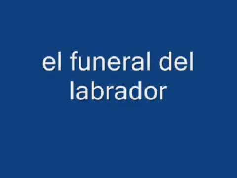 BARABARA Y DICK   el funeral del labrador   YouTube