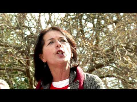 Lois Gibbs, Love Canal activist
