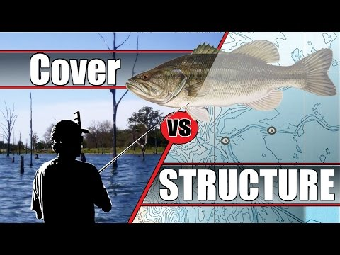 Cover Vs Structure - BASS Fishing (Hat Cam Bass)