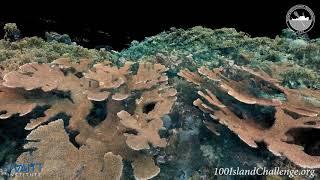 Curacao, Site: CUR CSA 142, 2015