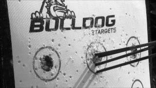 Bulldog Target Review