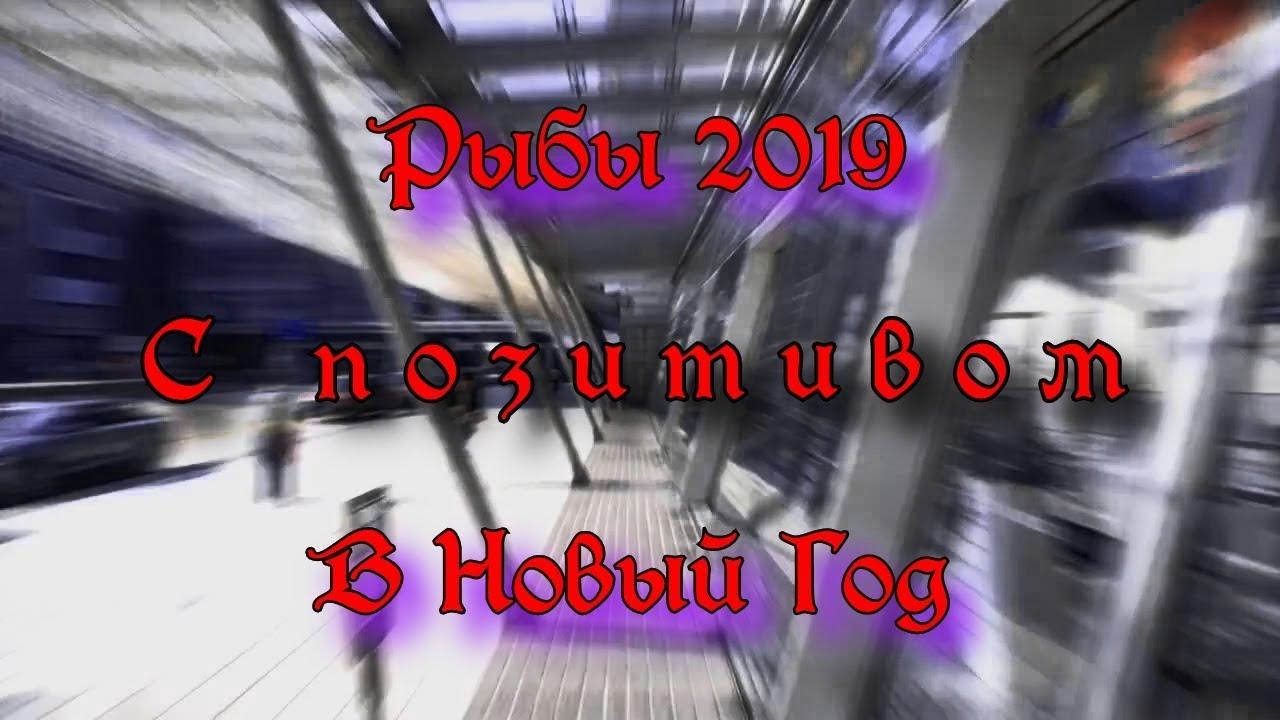 РЫБЫ на 2019г от ОКЕАНЫ ТАРО «Что год грядущий нам готовит»