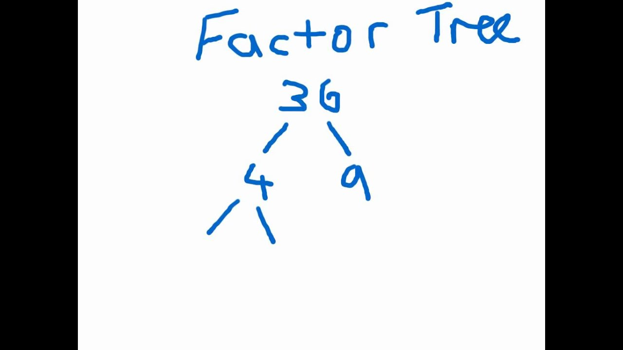 worksheet Factor Tree factor tree explanation youtube explanation