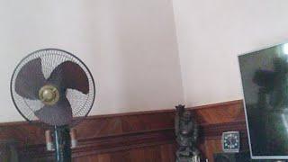 Tết Nhà Bà Hoan (Chế) Tết Nhà Bà Trọng – Nhạc chế tuyển chọn