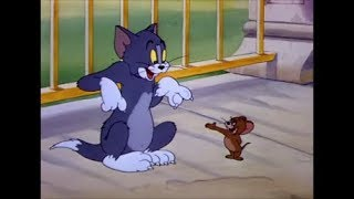 Tom and Jerry, 23 Episode - Springtime for Thomas (1946)