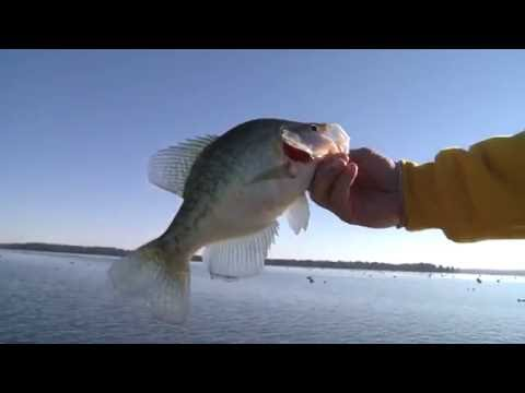 Four Seasons of Reelfoot Lake with Billy Blakley