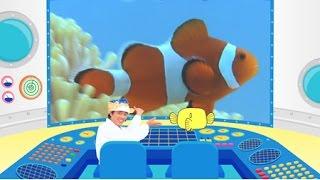 魚類学者さかなクンがナビゲートする教育ドキュメンタリーの第2弾。 htt...
