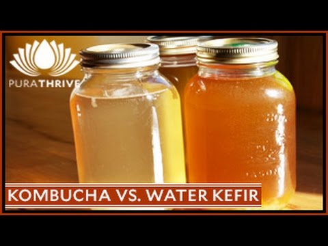Probiotics: Kombucha Tea Vs. Water Kefir | PuraTHRIVE- Thomas DeLauer
