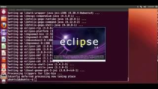 Installing Eclipse IDE with C/C++ plugin(or CDT) in Ubuntu Linux