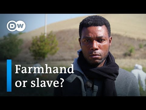 Slaves in Italy? | DW Documentary