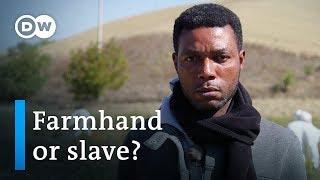 Slavery in Italy? | DW Documentary
