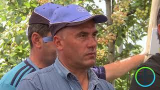 BAYER AGRO ARENA - Pomicultură 2018