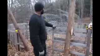 Build a Greenhouse w/Free Pallets + Cattle Panels 1
