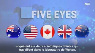Une enquête internationale sur le P4 à Wuhan