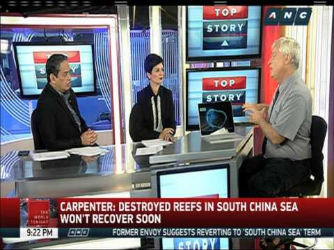 Several reefs destroyed by Chinese reclamation, expert says