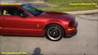 Best of Mustangs Leaving Car Shows & Meets ft 2016 Shelby GT350 Mustang