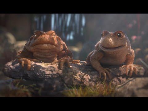 Две лягушки!_(Две лягушки  одна пожилая мудрая, а другая лягушка молодая и глупая!)