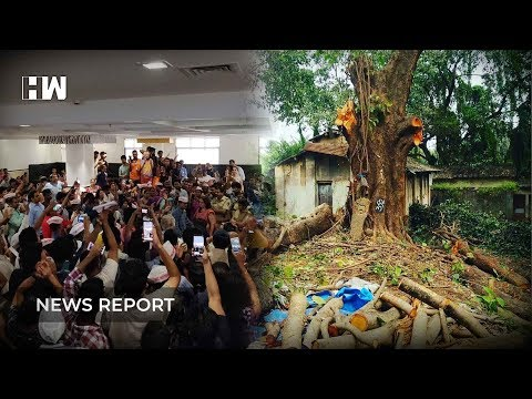 Biggest public hearing in Mumbai to save Aarey forest