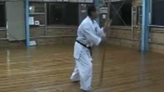 Shogen Ryu  bo 1