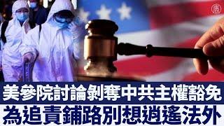 美參院討論剝奪中共主權豁免 為追責鋪路|@新唐人亞太電視台NTDAPTV |20200628