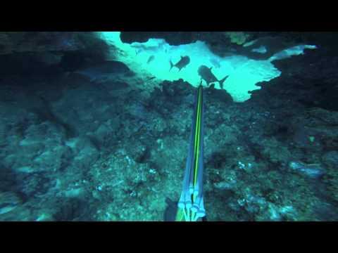 Kauai Dives: Ulua