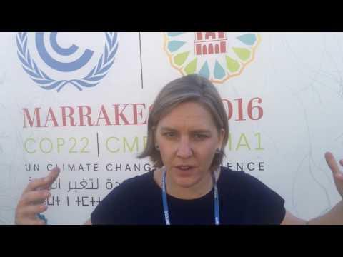 #insideCOP22: Karolina Skog (Swedish Minister of Environment)