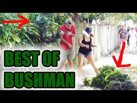 BEST OF BUSHMAN - FUNNY clips! Scare prank - funny video