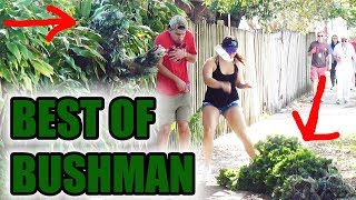 BEST OF BUSHMAN - FUNNY clips! Scare prank - funny video