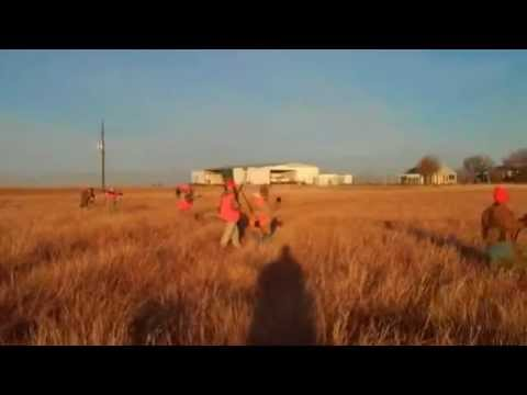 Pheasant Hunt near Plainview Tx 12/04/10