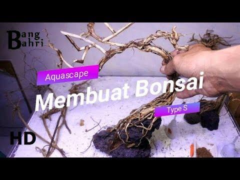 membuat-hardscape-aquascape-bonsai-sederhana-#1