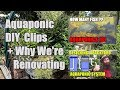 Aquaponic How To Clips - Aquaponic Update + Why We're Renovating