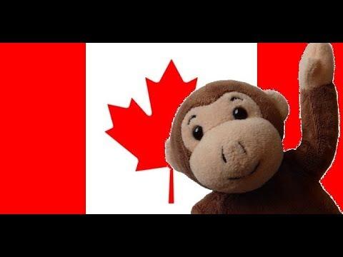 Globe Monkey goes to Toronto