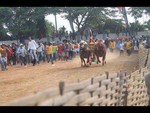 FULL VIDEO KARAPAN SAPI TINGKAT KABUPATENAN DAN ULANG TAHUN KOTA BANGKALAN || BULL RACE MADURA