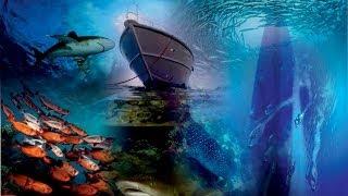 Red sea magic Thumbnail