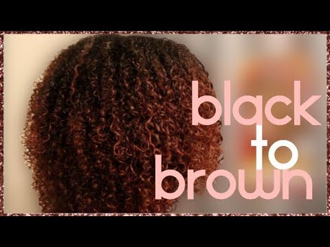 BLACK TO BROWN : HOW TO DYE NATURAL HAIR | CREME OF NATURE | MORGAN ARIEL HENRY